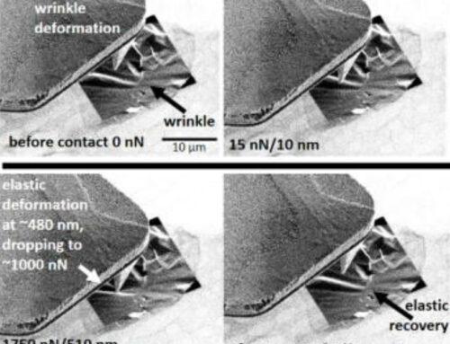 2021, April: AFSEM publication: Direct visualization of deformations in graphene membranes